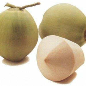 Jonge Kokosnoot